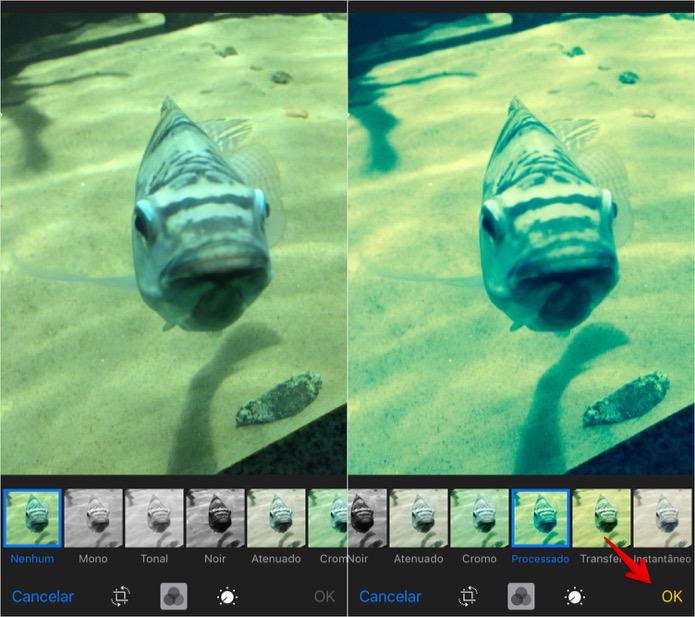 Aplicando filtro em uma foto (Foto: Reprodução/Helito Bijora)