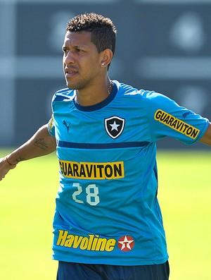 Antonio Carlos, Botafogo (Foto: Fernando Soutello / Agif)