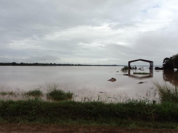 Tapira (Foto: PRE/Divulgação)