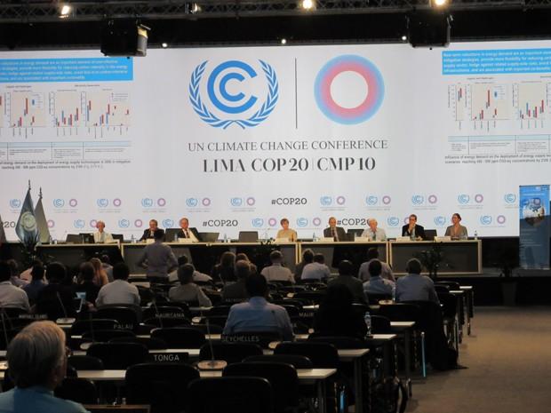 Uma das plenárias realizadas na COP 20 nesta terça-feira, em Lima, no Peru (Foto: Eduardo Carvalho/G1)