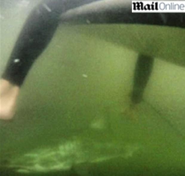 surfista tubarão (Foto: Reprodução/Mail Online)