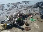 Voluntários retiram resíduos sólidos de praia em Peruíbe, no litoral de SP