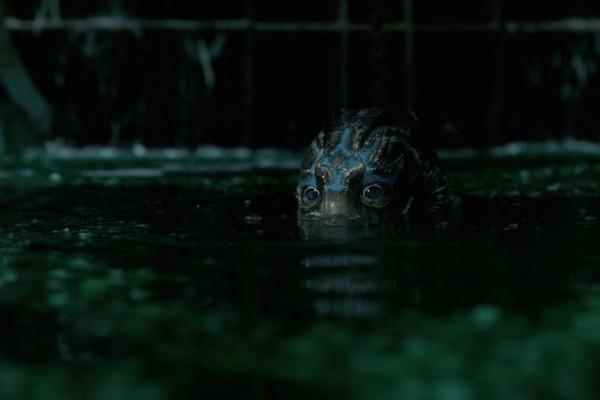Metade humana, metade anfíbia: Guillerme del Toro apresenta mais uma de suas fantasiosas criaturas (Foto: Divulgação)