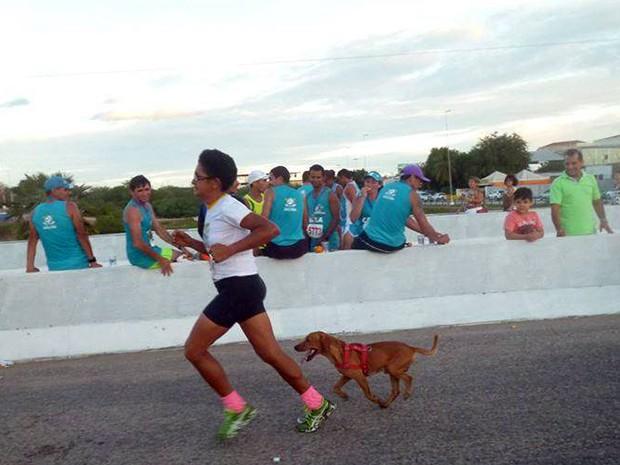 Jack acompanha a dona por todo o percurso (Foto: Divulgação/Acapam)