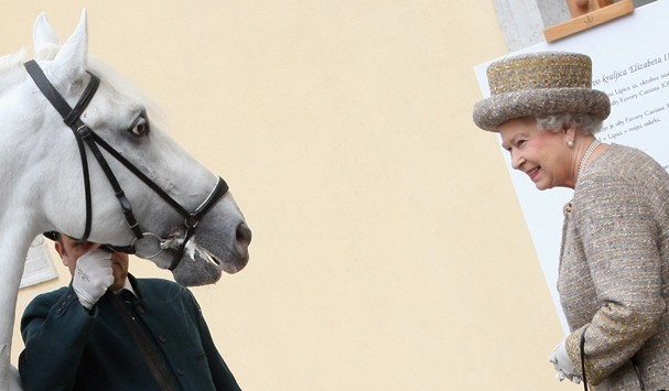 LIPICA, SLOVENIA - OCTOBER 22:  HM Queen Elizabeth II is presented with a Lipica horse called Kanizo during a tour of the Lipica farm on the second day of a two day tour of Slovenia on October 21, 2008 in Ljubljana, Slovenia. The Queen and the Duke of Edi (Foto: Getty Images)