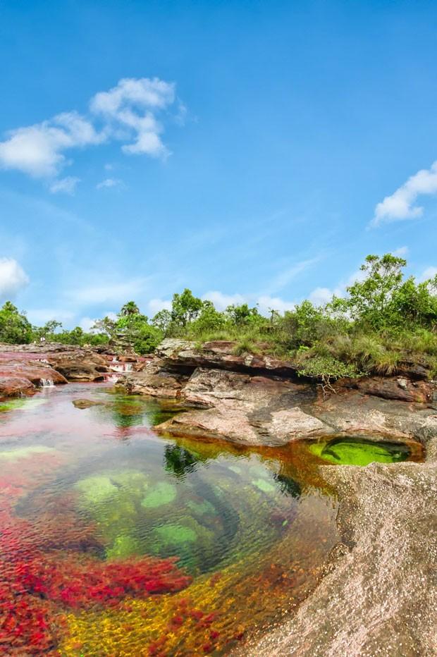 Caño Cristales, o rio colorido na Colômbia (Foto: Mario Carvajal/Creative Commons)