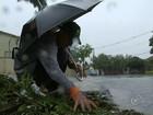 Guareí 'para' um dia após chuva de granizo do tamanho de cebola