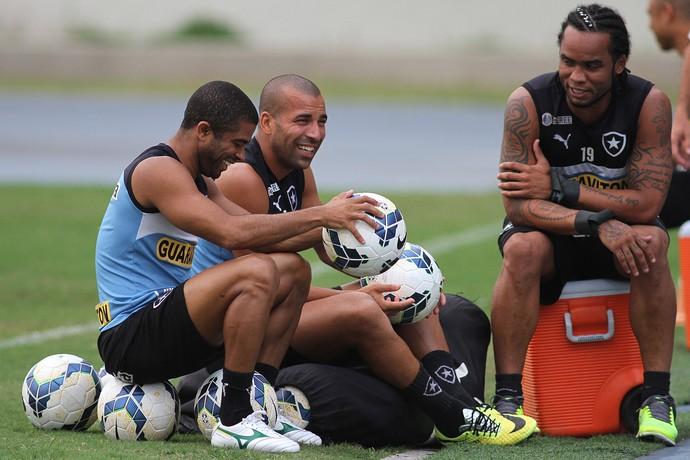 Emerson Sheik e Carlos Alberto no Botafogo (Foto: Vitor Silva / SSPress)