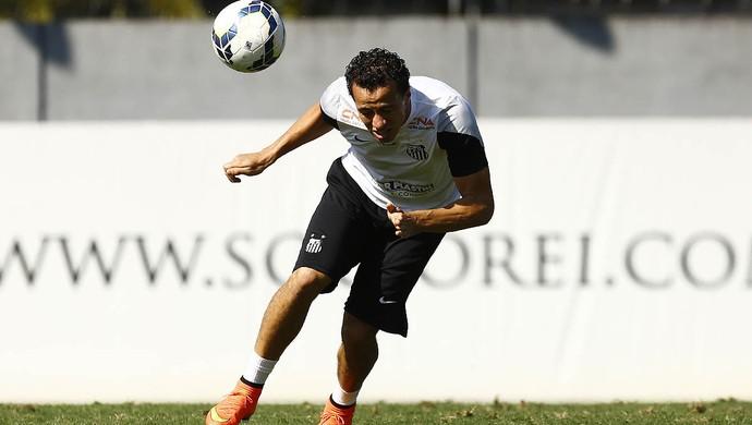 Leandro Damião Santos (Foto: Ricardo Saibun / Santos FC)