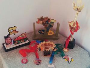 Troféus e medalhas conquistados pela skatista mirim (Foto: Arquivo pessoal/Lilian Mendes)