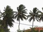 Recife enfrenta agosto com chuvas, temperaturas e ventos atípicos