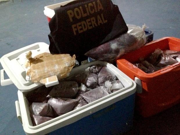 Droga com açaí (Foto: Divulgação/Polícia Federal)