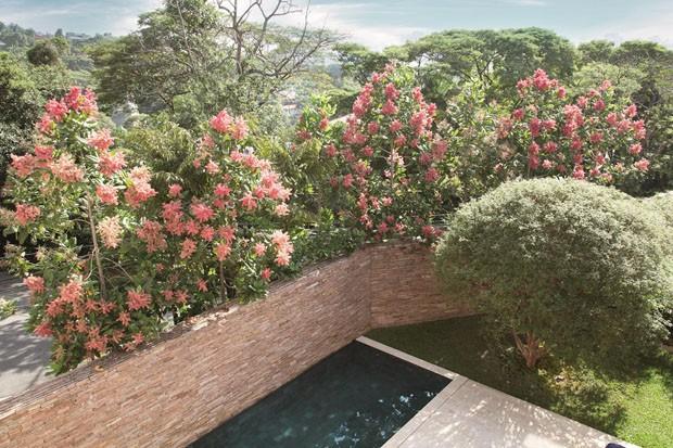 Jardim contemporâneo em São Paulo é uma verdadeira obra de arte (Foto: MCA Estudio/Divulgação)