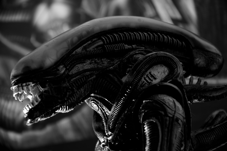 Se há vida inteligente fora da Terra, por que ainda não fomos contactados?