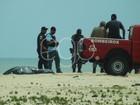 Corpo de Rian Brito, neto de Chico Anysio, é encontrado, diz Defesa Civil