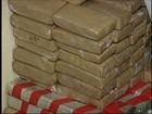 Polícia apreende mais de 300 quilos de maconha na Castello Branco