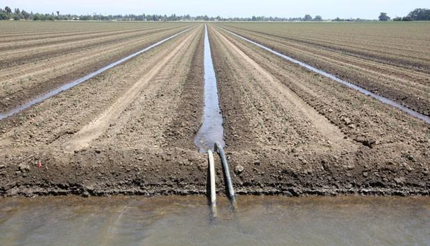Foto de 20 de maio mostra irrigação de fazenda perto de Dixon, na Califórnia  (Foto: AP Photo/Rich Pedroncelli)