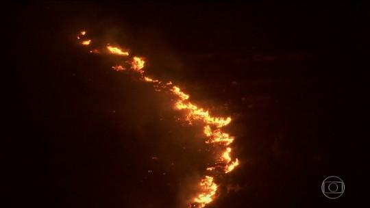 Israel prende 13 pessoas suspeitas de ligação com incêndios florestais