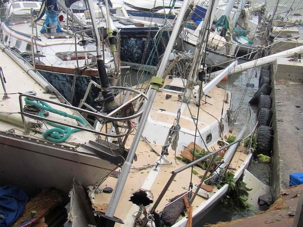 Destruição da ilha de Vanuatu após a passagem do ciclone Pam (Foto: REUTERS/UNICEF Pacific/Handout)