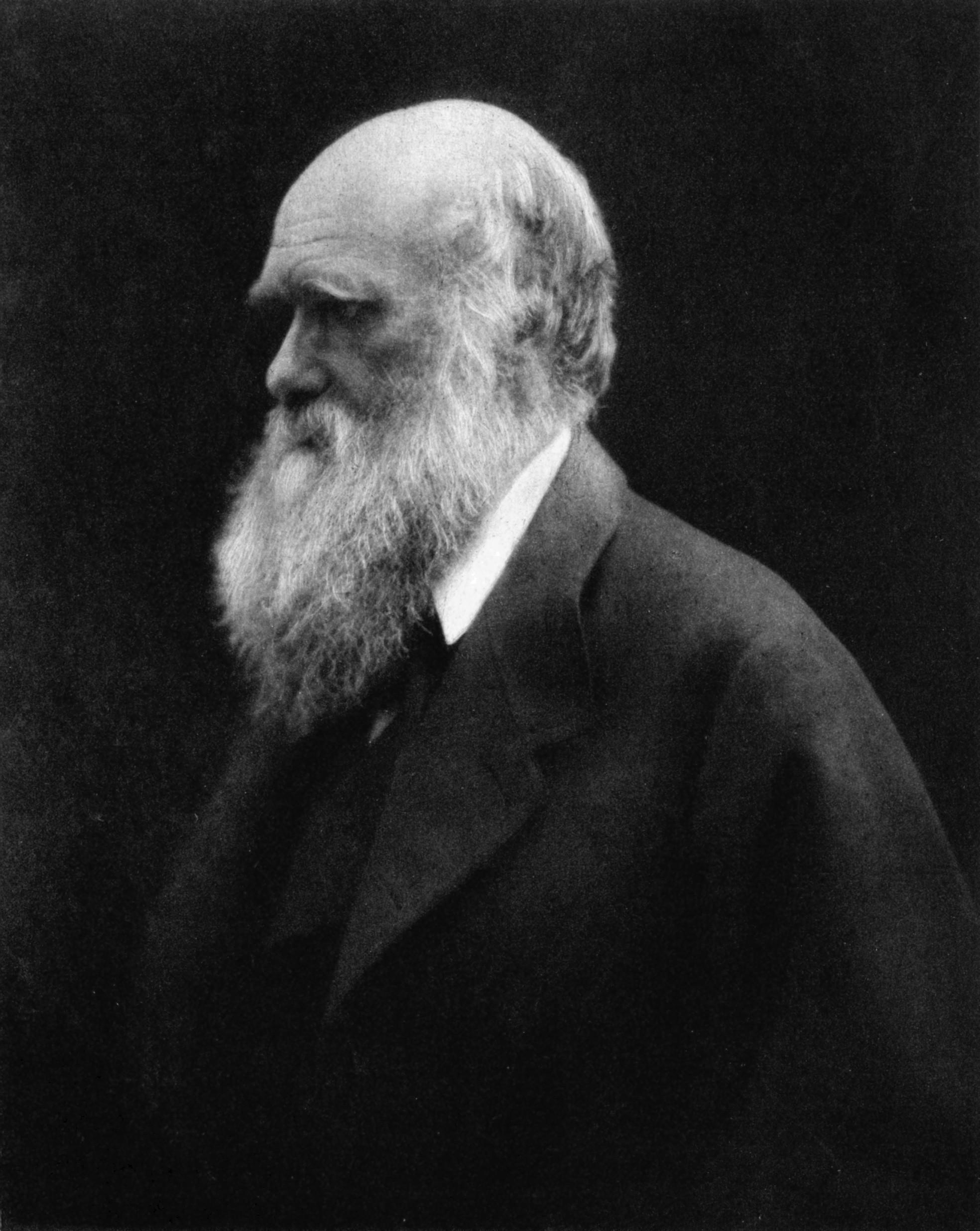 Charles Darwin em 1868 (Foto: Wikimedia/Julia Margaret Cameron)