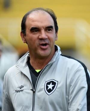Ricardo Gomes - Fluminense x Botafogo (Foto: André Durão)