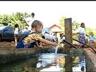 Ação educativa recupera áreas de nascentes de rios degradadas em GO