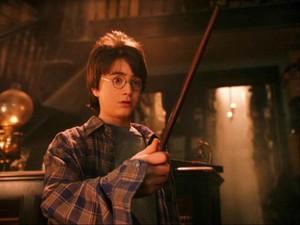 Harry Potter e a pedra filosofal (Foto: Divulgação)