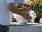 Possíveis criadouros do mosquito da dengue são retirados de cemitério