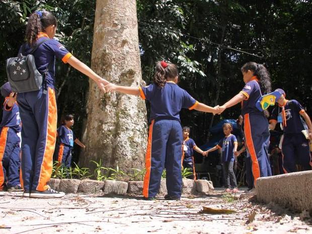 Adultos e crianças se juntaram para dar um abraço simbólico em uma seringueira, uma das árvores mais antigas do Bosque (Foto: Divulgação/ Alessandra Serrão - NID/Comus)