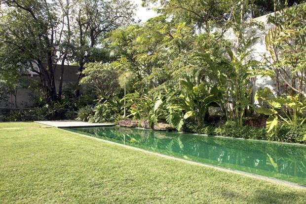 arvore manaca jardim:Lorena Cavalcanti: Quando o jardim se une a piscina
