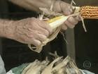 Criadores do CE recorrem aos grãos da CONAB para alimentar rebanhos