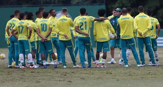 plano de prevenção (Cesar Greco/Ag. Palmeiras/Divulgação)