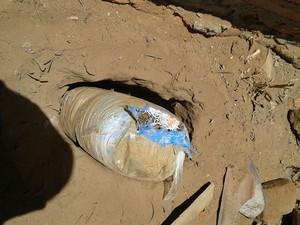 PM encontra maconha enterrada no quintal de uma casa em Buíque, Pernambuco (Foto: Divulgação/ Polícia Militar)