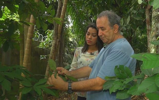 Rosiane Chagas bate-papo com apaixonado por plantas (Foto: Amazônia Rural)