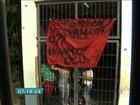 Ocupação de escola em SP entra no 4º dia e alunos aguardam audiência