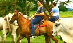 Na fazenda de Leonardo, Pedro anda a cavalo, canta e garante: 'Estou 98%'