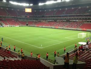 Arena Pernambuco (Foto: Chico Feitosa)