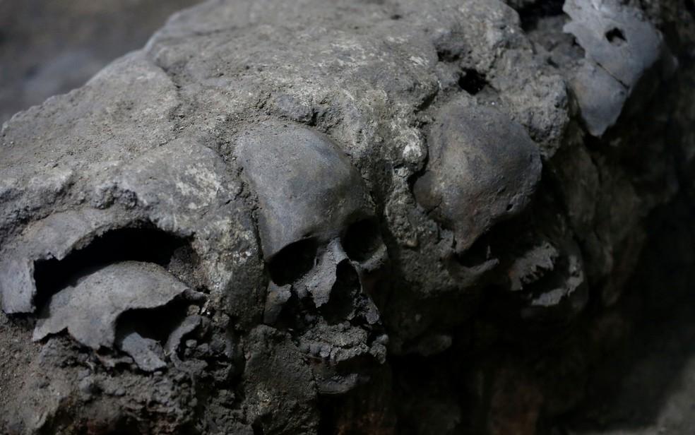 Os crânios foram descobertos em 2015 (Foto: Reuters/Henry Romero)