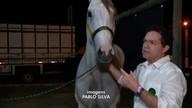 Aumenta número de criadores de cavalo na Expoapi