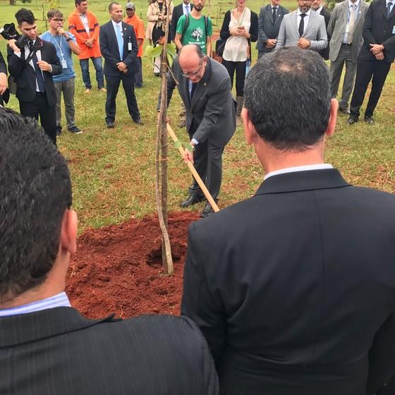 Cercado de seguranças, ministro do STF Gilmar Mendes planta muda de árvore em Brasília (Foto: Reprodução)