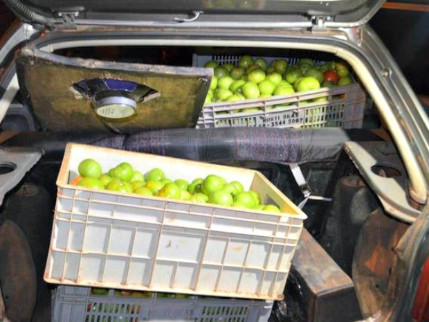 Caixas de tomates furtados estavam em carro (Foto: MT Notícias)