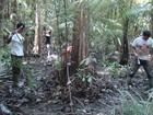 Estudo da Embrapa mapeia áreas de várzea em Mazagão, no Amapá