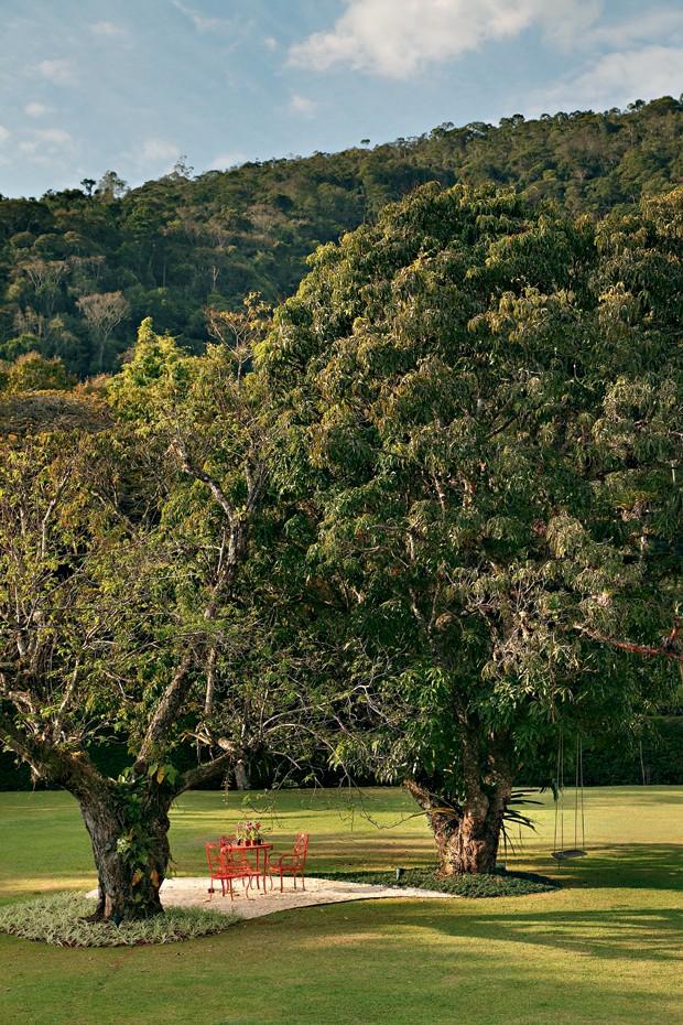 patricia-carvalho-montanha-leveza (Foto: Denilson Machado/MCA Estúdio)