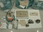 Pesquisador do Rio preso com fóssil no CE deverá ser indenizado