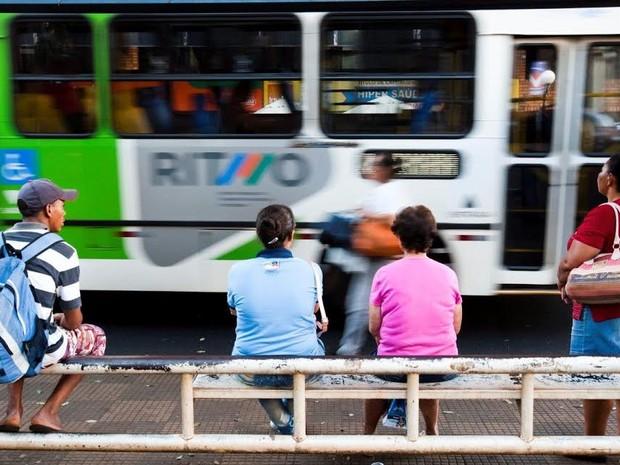 Ônibus do transporte público de Ribeirão Preto (Foto: Mastrangelo Reino/Jornal A Cidade)