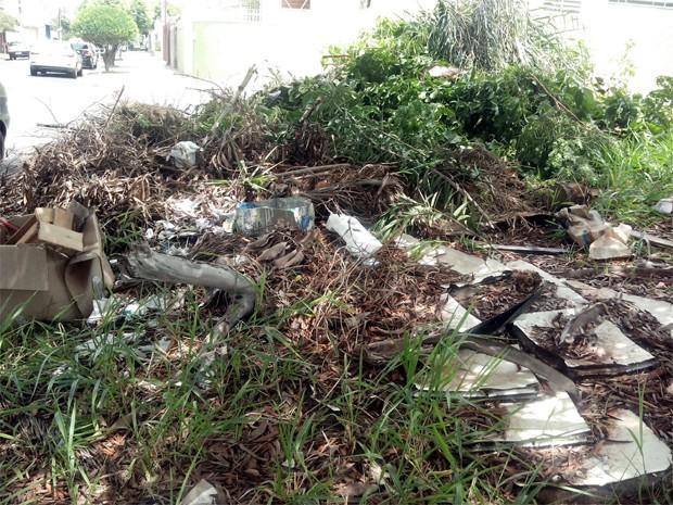 Lixo acumulado pode atrair animais peçonhentos, diz internauta (Foto: James Pereira dos Santos/ VC no G1)