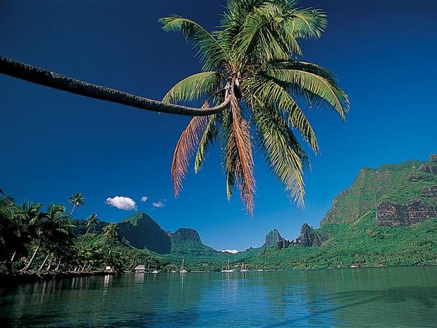 Moorea, ilha na Polinésia Francesa (Foto: Tahiti Tourism/Divulgação)