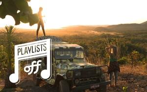 60 dias no pantanal