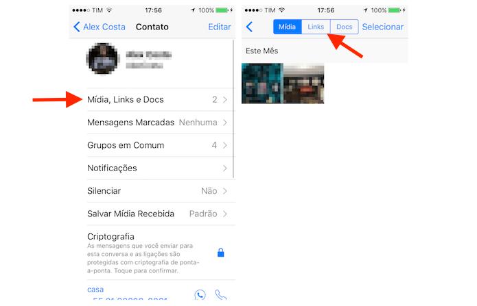 Acessando a página de links do WhatsApp para iPhone (Foto: Reprodução/Marvin Costa)