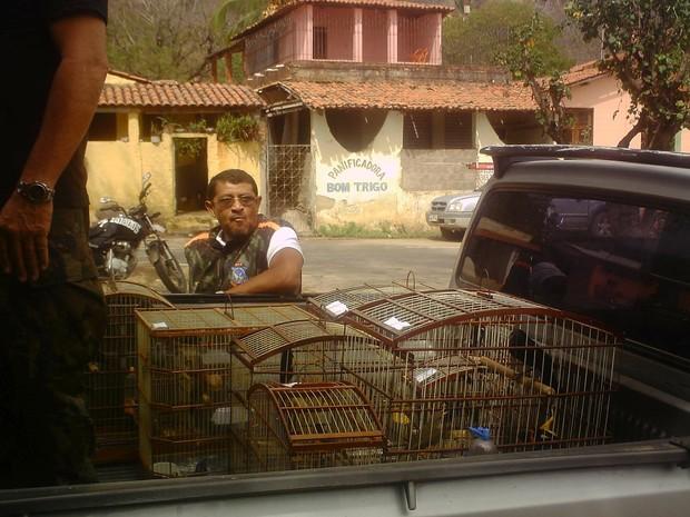 Animais foram encaminhados ao Centro de Triagem do Ibama após apreensão (Foto: Sociedade Protetora de Animais/Divulgação)